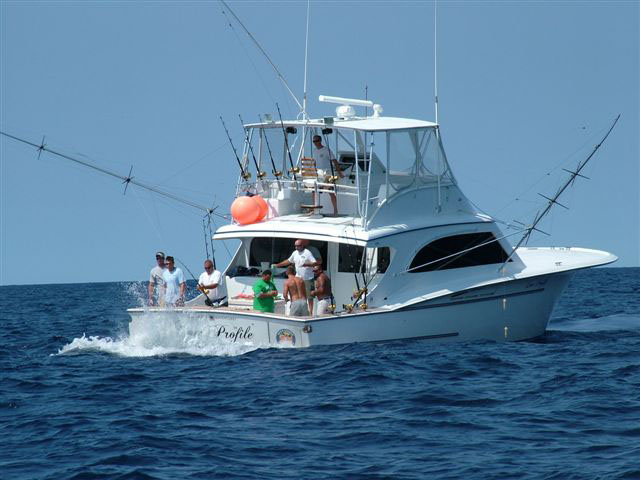 Swordfish trips for Tuna fishing charters nj