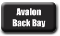 Avalon Back Bay Fishing