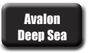 Avalon Deep Sea Fishing