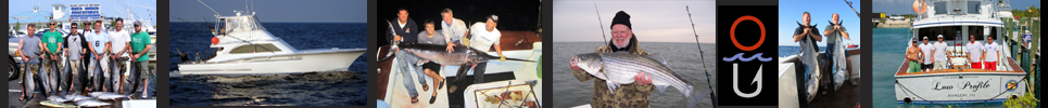 Tuna Fishing Trips