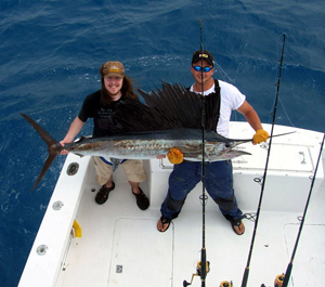 South Florida Sailfish