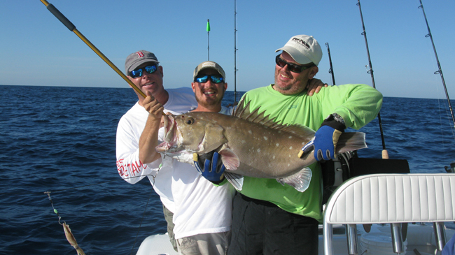 Key West Snowy Grouper