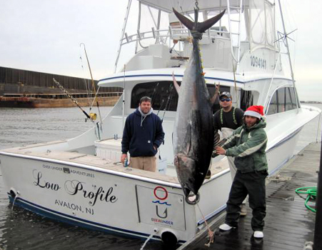 bluefin tuna charter fishing