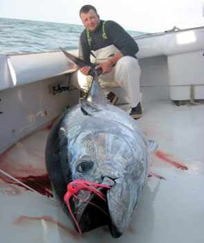 morehead city tuna fishing