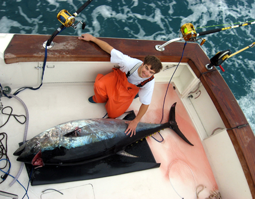 NC giant bluefin tuna