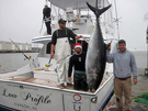 North Caroline bluefin tuna fishing