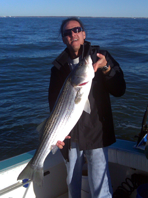 NJ stripers