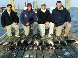 NJ striper fishing