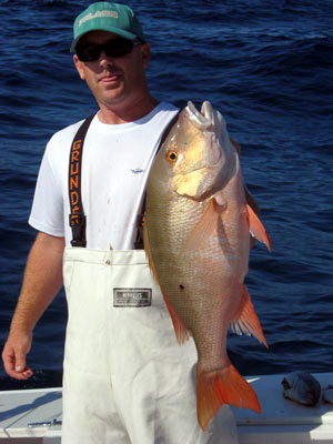 Dry Tortugas Mutton Snapper